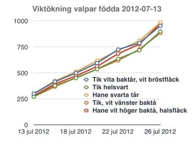 20120727-162437.jpg