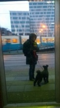 På väg till My Dog