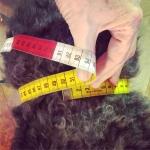 Mäter magen med måttband